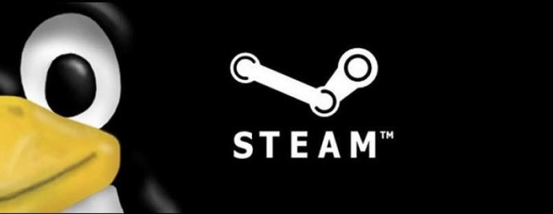 Steam pentru Linux intra in teste in octombrie