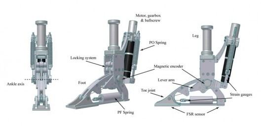 AMP-Foot 2.0 – un nou tip de proteza pentru un mers natural