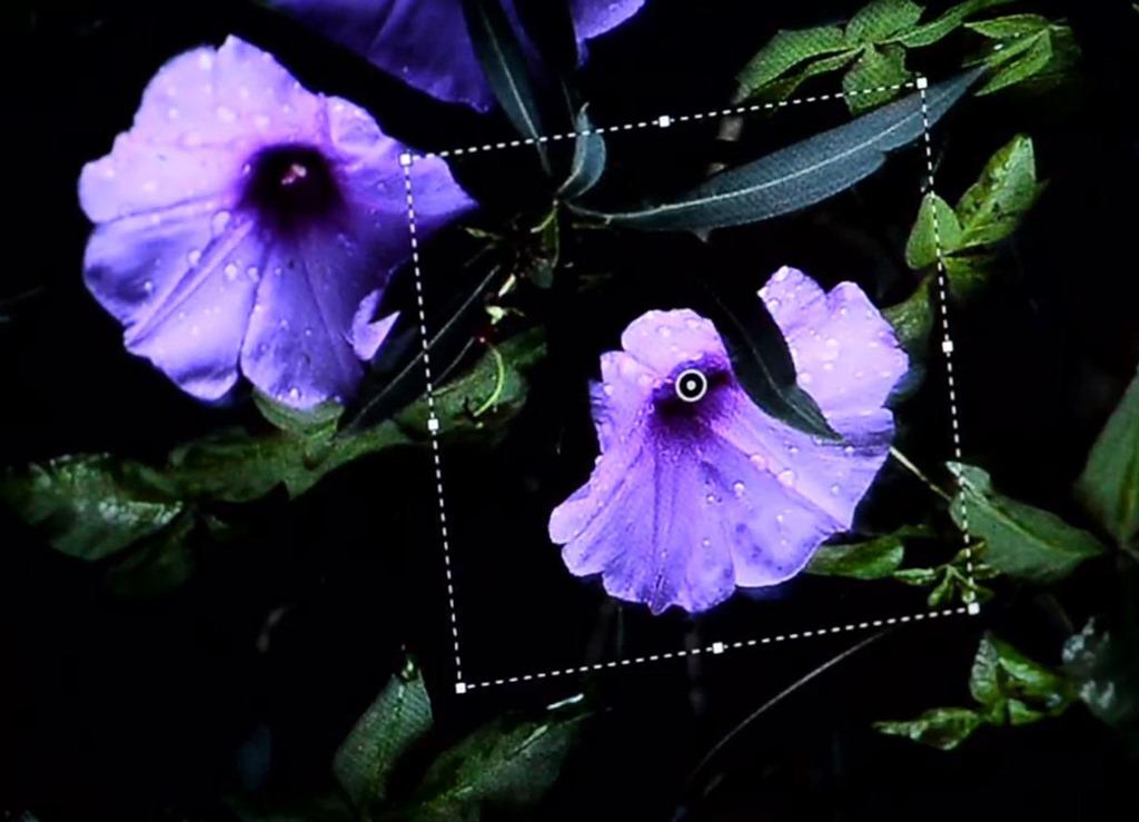 Urmatorul Photoshop va putea remedia focalizarea gresita a unei imagini [VIDEO]