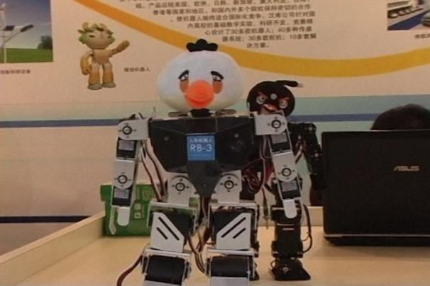 Copii cu dizabilităţi se pot trata învăţând un robot Angry Birds