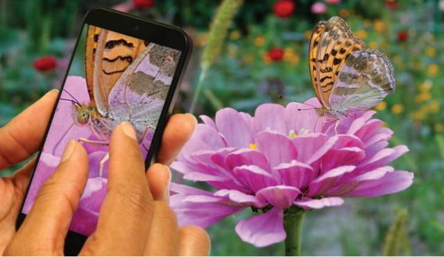 OmniVision dezvăluie doi noi senzori de 21 și respectiv 24 Megapixeli pentru smartphone