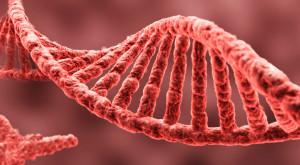 Experimentul care ar putea ajuta la crearea unui leac pentru Alzheimer