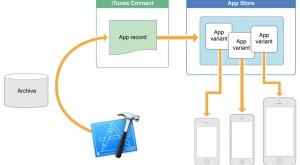 Cea mai utilă funcţie din iOS 9 vă ajută să aveţi mai mult spaţiu pe iPhone