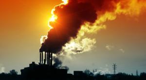 Există o soluție împotriva încălzirii globale și e mai simplă decât credeai
