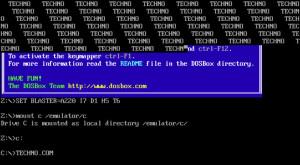 Simpli și eleganți. Vechii viruși pentru MS-DOS au ajuns într-un muzeu al virușilor