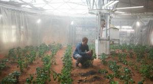 Masterchef cosmic: NASA a gătit cu succes ingrediente crescute în condiții asemănătoare celor de pe Marte