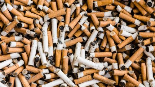 Cum ar putea mucurile de țigară să ajute mediul înconjurător