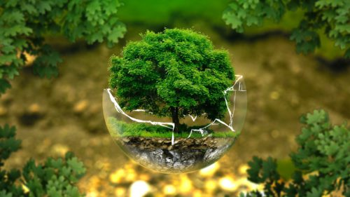 Planul Microsoft care ar putea avea un impact decisiv asupra planetei