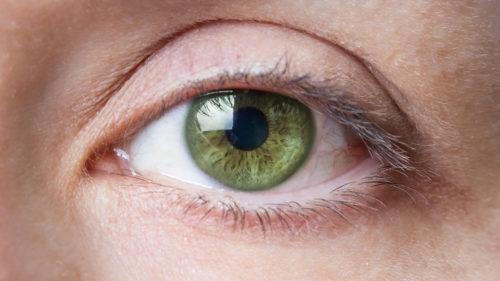 """Inteligența artificială de la Google îți """"citește"""" în ochi bolile de inimă"""